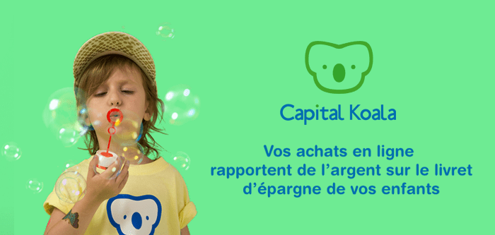avis-capital-koala
